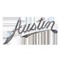 Elementy zawieszenia samochodowego |  AUSTIN