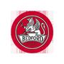 Pompa hamulcowa, układu hamulcowego |  BEDFORD
