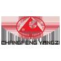 Przepustnica samochodowa |  CHANGFENG